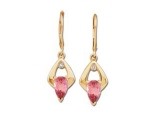 Jewels But Jewels - Jewelry Stores - Genuine Red Ruby and Diamond Earrings